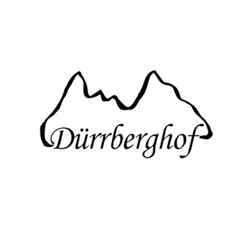 Friesenpferde am Dürrberghof